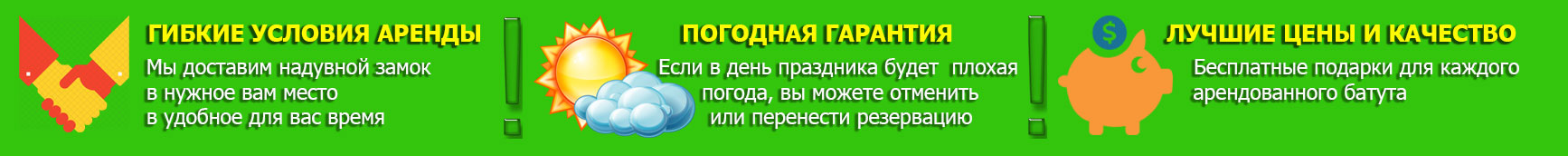 Baneris rus